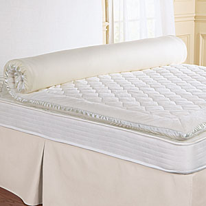 Who Sells Sleep Master 8-Inch Tight Top Pocketed Spring Mattress, Queen Cheap